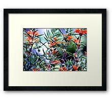 Incredible Orange Flowers Framed Print