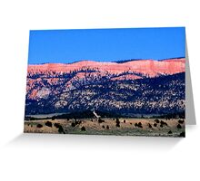 Kodachrome Basin State Park, Utah Greeting Card