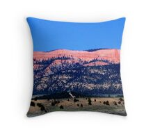 Kodachrome Basin State Park, Utah Throw Pillow