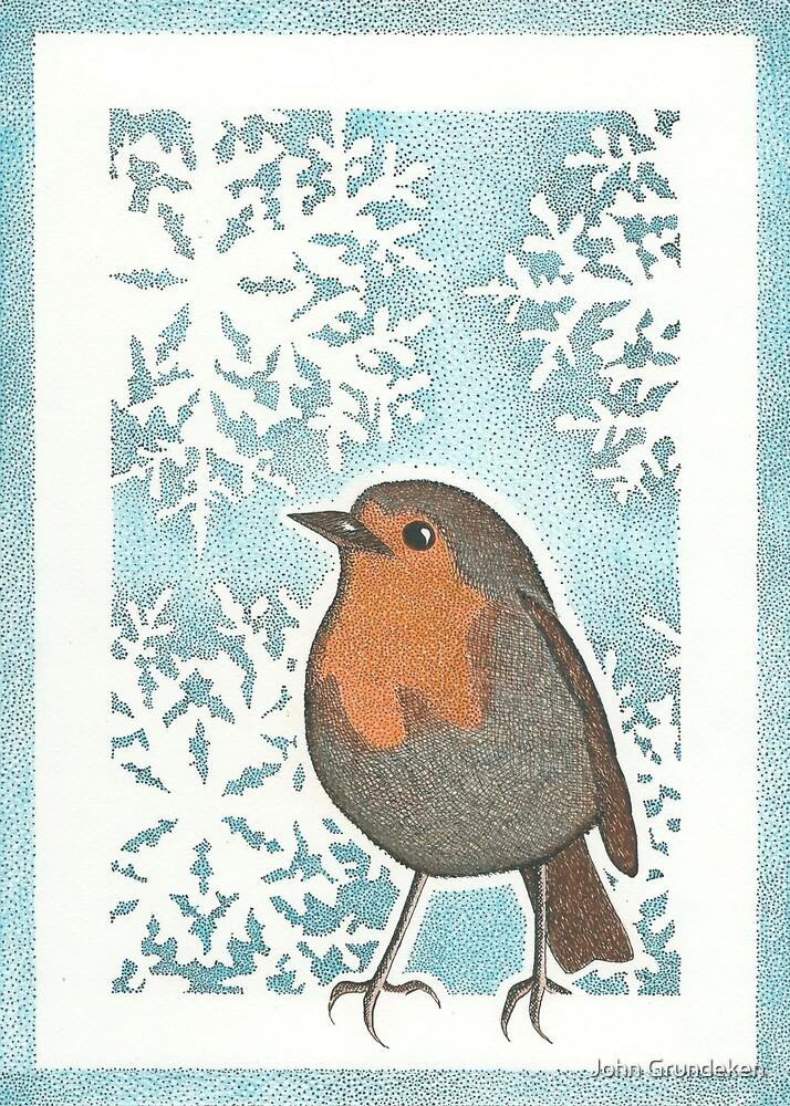 Robin by John Grundeken