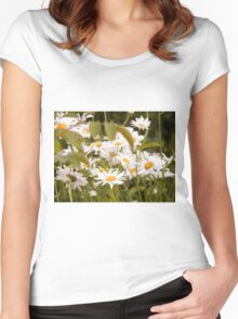 Summer Chamomiles 2 Women's Fitted Scoop T-Shirt