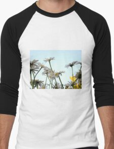 Summer Chamomiles 3 Men's Baseball ¾ T-Shirt