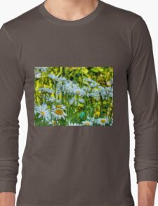 Summer Chamomiles 8 Long Sleeve T-Shirt