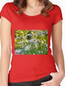 Summer Chamomiles 10 Women's Fitted Scoop T-Shirt
