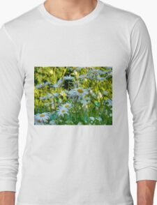 Summer Chamomiles 10 Long Sleeve T-Shirt