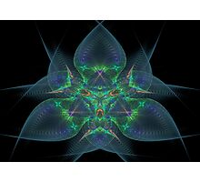 Fractal 10 Photographic Print
