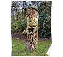 Face in Wood - Tree Stump Poster