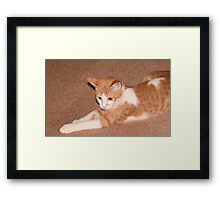 What Are You Saying? Framed Print