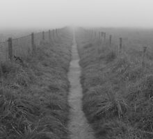 Vanishing Point by Neil Evans