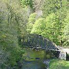 Nr. Keswick, Cumbria by acespace