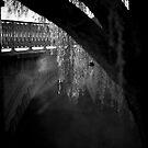 Bridge Fog by Crispin  Gardner IPA