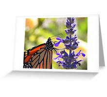 Monarch 2 Greeting Card