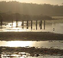Sundown over Dee Why Lagoon 3 by Spirit Level Creations
