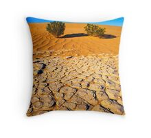 Death Valley #509 Throw Pillow