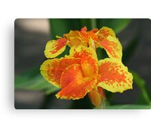 Orange & Yellow Flowers Canvas Print