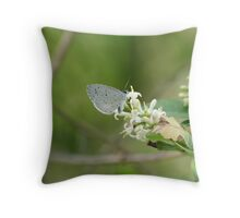 Spring Azure Butterfly Throw Pillow