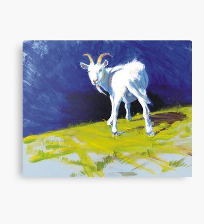 Strike A Pose - Amusing Acrylic Goat Painting Canvas Print