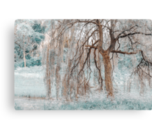 Secret Life of the Willow Tree. Nature in Alien Skin Canvas Print