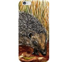 H is for Hedgehog iPhone Case/Skin