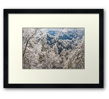 Ice Storm Framed Print