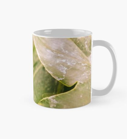 Clear 'Glasswing' Tropical Butterfly Mug