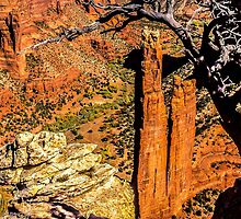 Spider Rock at Canyon de Chelly by Fred Young