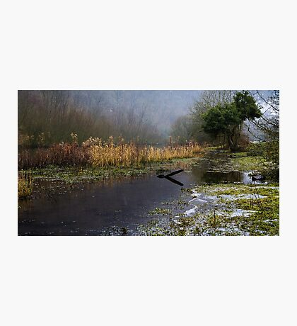 Frozen Shore on the River Wye Photographic Print