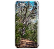Walk Among the Big Trees iPhone Case/Skin