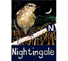 N is for Nightingale Photographic Print