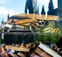 Reading at Hogsmeade by amhollingsworth