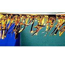 Golden Fingers Dancing The Wind Photographic Print