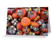 Gourd harvest in Black Earth Greeting Card