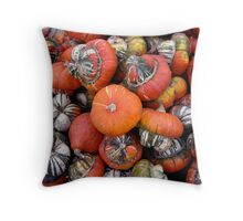 Gourd harvest in Black Earth Throw Pillow