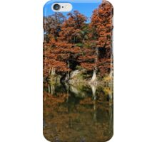 Guadalupe River State Park iPhone Case/Skin