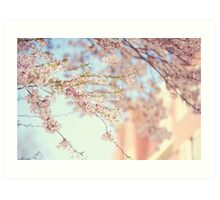 Pink Touch of Softness. Pink Spring in Amsterdam Art Print