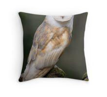 Barn Owl Throw Pillow