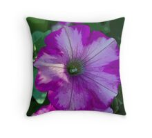 Pretty pink petunia garden flower. Digital art sketch style. For home, office, business decoration. Throw Pillow