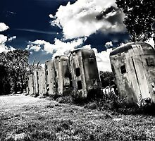 Airstream Ranch HDR/IR by CalendaRus