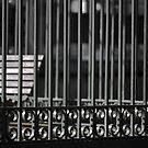 Bench Cage by Crispin  Gardner IPA