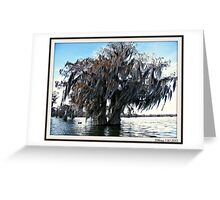 Double Cypress Greeting Card