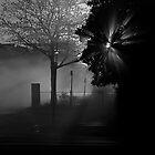 Street Fog by Crispin  Gardner IPA