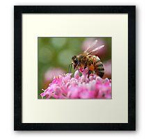 Bee Brave Framed Print