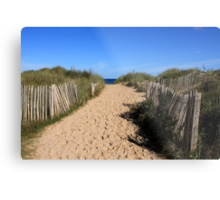 Chestnut Fence To The Beach Metal Print