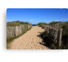 Chestnut Fence To The Beach Canvas Print