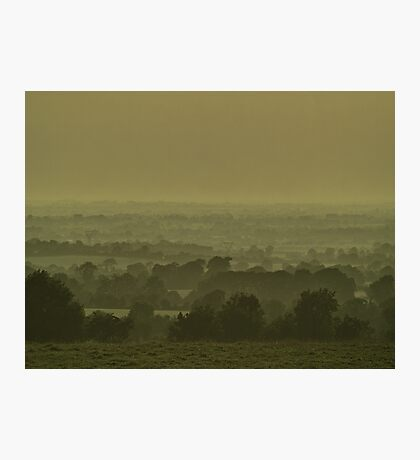 Nature Stripes Photographic Print