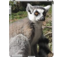 Furry Stripey Nomad iPad Case/Skin