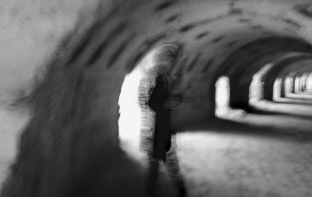 The Inspectre by Bruce  Watson