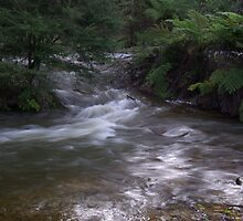Waterfall next to the dam at Healsville by captainslow