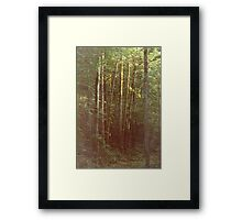 Inspiring Light Framed Print