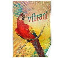 Vibrant Poster
